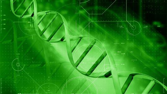 analisis cannabinoides y terpenos