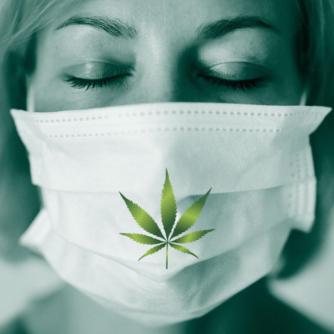 Cannabis y Coronavirus