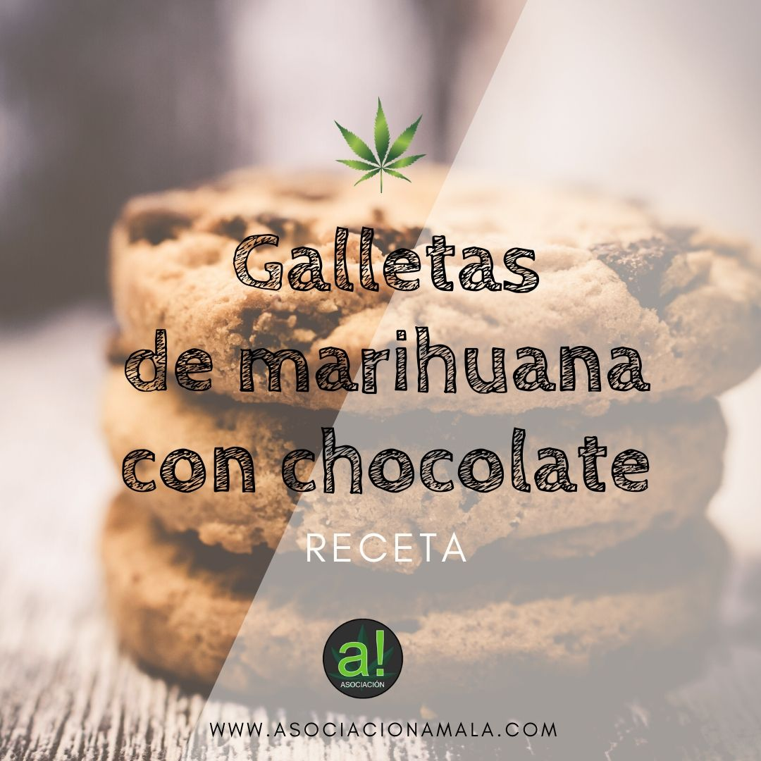 galletas de marihuana con chocolate